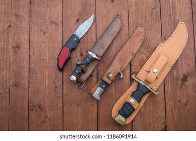 Hunting knives of assorted sizes lined up on a wooden table