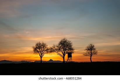 hunting lodge between trees at sunset