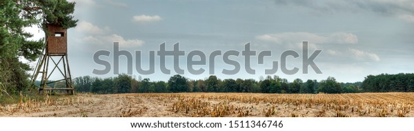 Hunting pulpit on the edge of a huge mown maize field, as one often finds in the east of Germany.
