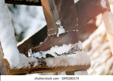 Hunting  snowy  shoes on the Ladder to the seating area in the forest. Winter season.