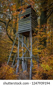 Hunting stand in a German autumn forest