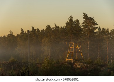 Hunting tower in forest in sunrise, with fog