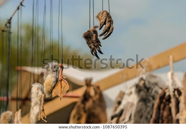 Hunting Trophy Amulets Talismans Parts Animals Stock Photo (Edit Now