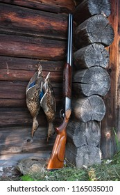 hunting trophy - two shot ducks hanging on the wooden wall and shotgun
