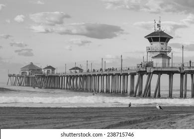 The Huntington Beach pier at sunrise, CA black and white