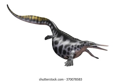 The Hupehsuchus was a prehistoric marine reptile that lived during the Triassic period.