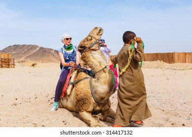 HURGHADA, EGYPT - MAY 18, 2015: Arab boy, a resident of the Bedouin village rolls for the money tourists on a camel.