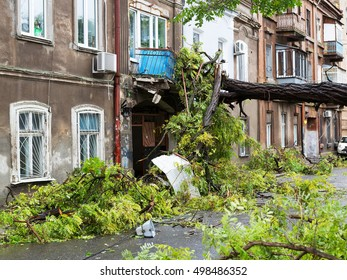 Hurricane CHRISTIE. Heavy rain and gale - force gusts of wind caused accident - old tree during storm fell on car and destroyed house. Strong storm with rain