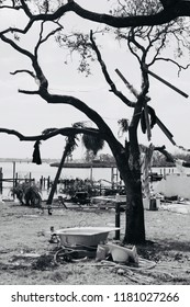 Hurricane Katrina aftermath in Mississippi,  August 2005
