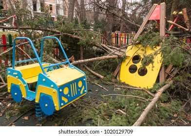 Hurricane trees fell on the playground