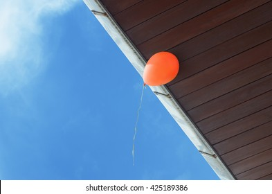 Hurry up, last chance. Balloon is about to fly away.