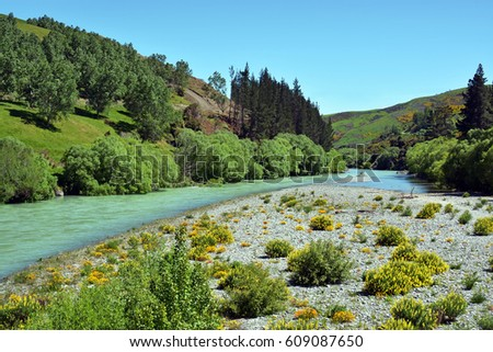 Hurunui River in Spring, Canterbury, New Zealand. In the foreground is the river bed along with wild Lupin flowers.