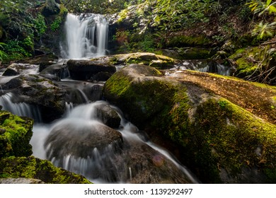 Husky Branch Falls In Spring in the Smokies