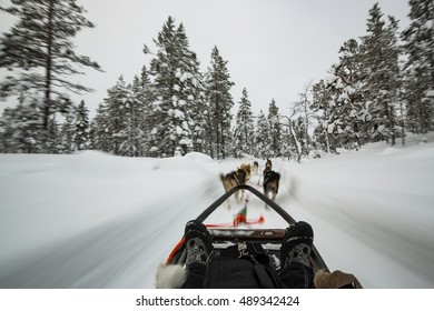 Husky sledge ride in Lapland, Finland. (motion blur)
