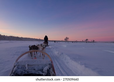 Husky sledge ride at sunset in Finnish winter wonderland in Lapland - first person view from sledge