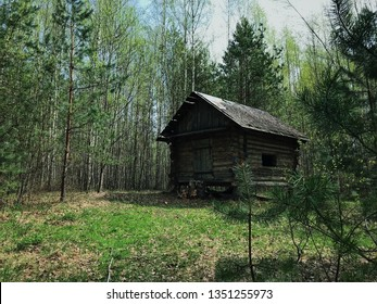 Hut in the forest