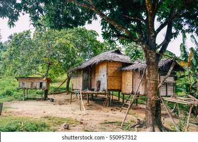 A hut in the forest, Philippines