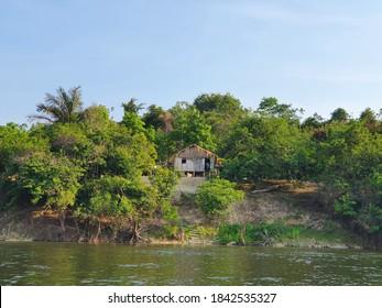 Hut hidden in the Amazon Rainforest