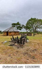 Hut House in the background with dry burnt bark in the foreground