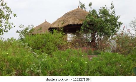 Hut made in garden