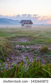 Hut on the grass field in the morning