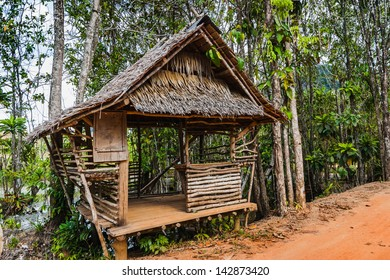 hut on the road in the jungle with palm trees on the  Phuket in Thailand