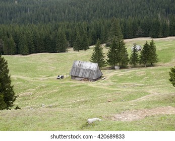 The hut sheepherders  in Polish Tatra Mountains