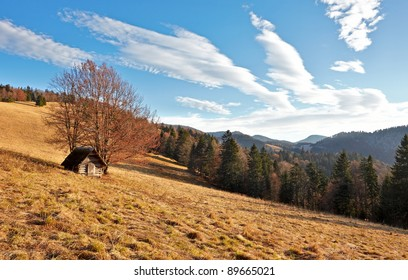 Hut, tree and sky