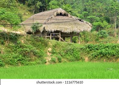 Hut in Vietnam