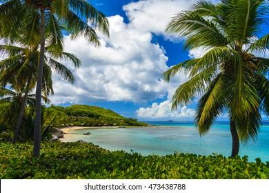 Huts along a tranquil tropical beach on Virgin Gorda, British Virgin Islands.