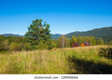 Huts on meadow in Bieszczady mountains. Polish mountain landscape.