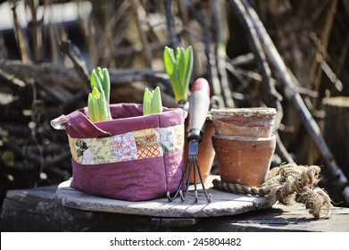 hyacinth bulbs in handmade fabric quilt bag  with tools and pots in early spring garden