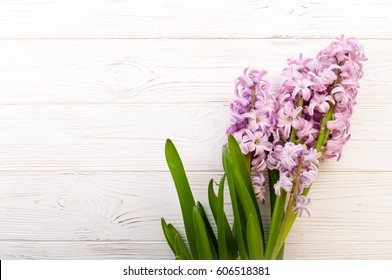 Hyacinth flowers on white wooden background. Bouquet of spring flowers. Spring background