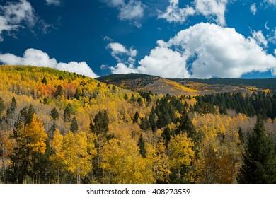 Hyde Park during peak Fall Season in Santa Fe, New Mexico.