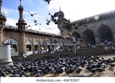 HYDERABAD, INDIA - JUNE 25: Pigeons in front of Mecca Masjid, a famous monument in Hyderabad on 25 June 2006
