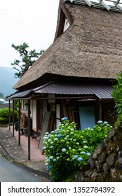 Hydrangea blooming on a thatched roof house