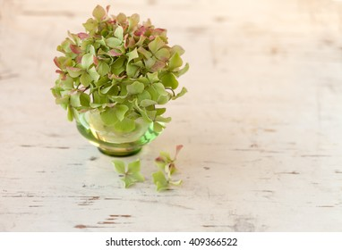 Hydrangea flower in green vase on rustic cream board