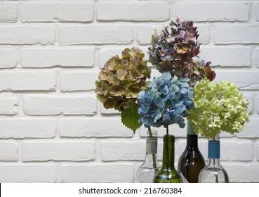 Hydrangeas in bottles against white background