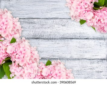 Hydrangeas on background of shabby wooden planks