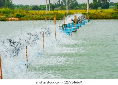 Hydraulic turbine water or the Paddle wheel aerator active in aquaculture pond for increase dissolve oxygen in water, improve water quality, Selective focus