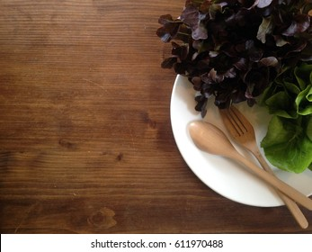 hydroponic vegetables fresh green oak lettuce in plate on wooden table top view with copy space for text