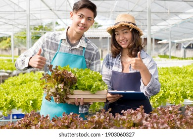 Hydroponics, young Asian farmers examined the quality of organic vegetables grown using hydroponics and documented leaf growth records. Organic farming business concept.