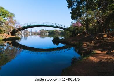 The Ibirapuera bridge in Ibirapuera lake