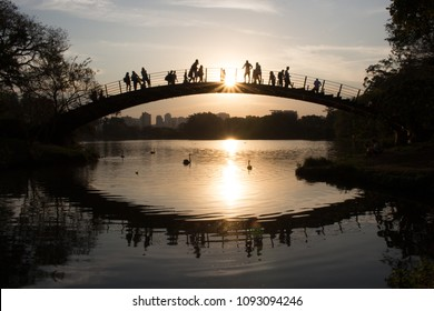 Ibirapuera Park. Awesome and colorful sunset by the lake. Beautiful sky reflections on the water. People gathered over the bridge to watch the golden hour miracle. Cute swans. Sao Paulo, Brazil