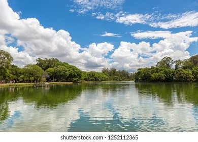Ibirapuera Park on a sunny Sunday with its tropical vegetation around the lake, Sao Paulo, Brazil.