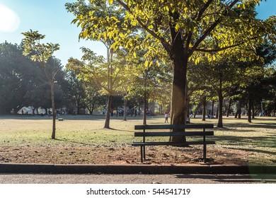 Ibirapuera Park in Sao Paulo, Brazil (Brasil)