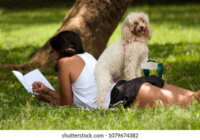 Ibirapuera Park, Sao Paulo. January 08, 2012. Girl reading a book quietly on the lawn of the park in the company of her pet.