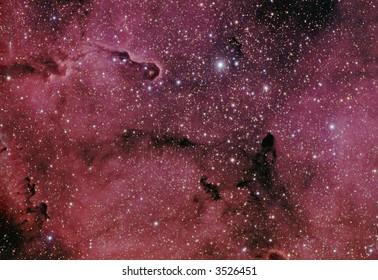 IC 1396 / VdB 142 nebula in Cepheus