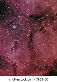 IC 1396 / VdB 142 nebular complex in Cepheus