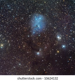 IC 446 nebula in Unicorn